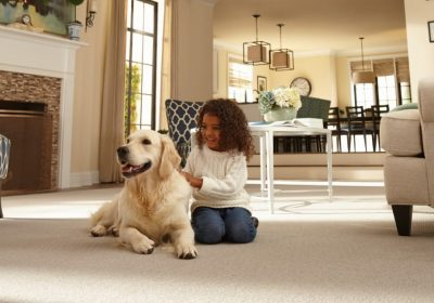Best carpet for pets dogs cats
